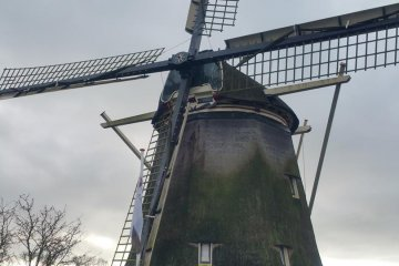 KOTİL - Brüksel ve Amsterdam Seyahati